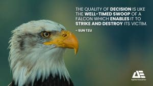 Applied-Education-Quality-Decision-Quote